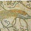 Il pavone, simbolo dell'immortalità